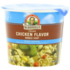 quick meals: Dr. McDougall's - Light Sodium Chicken Noodle Soup Cup