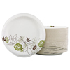 "disposable dinnerware: Dixie - Pathways™ 10.125"" Heavy Weight Paper Plates Wise Size"