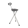 canes & crutches: Drive Medical - Silver Folding Lightweight Cane Seat