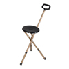 canes & crutches: Drive Medical - Bronze Adjustable Height Folding Lightweight Cane Seat