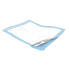 Kendall: Kendall - Durasorb Bed Underpad 23in x 36in Light Blue
