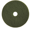 Floor Care Equipment: Treleoni - Green Scrubbing Pad - Conventional 17""